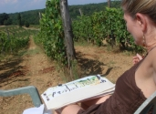 Artist on location - private vineyard , Central Italy